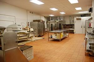 Control de plagues i higiene ambiental a l'Industria - Ambinet